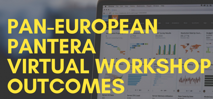 Pan-European PANTERA Virtual Workshop (EUSEW 2020) outcomes