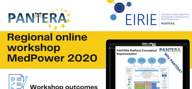 PANTERA regional virtual workshop MedPower 2020  outcomes