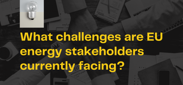 What challenges are EU energy stakeholders currently facing?